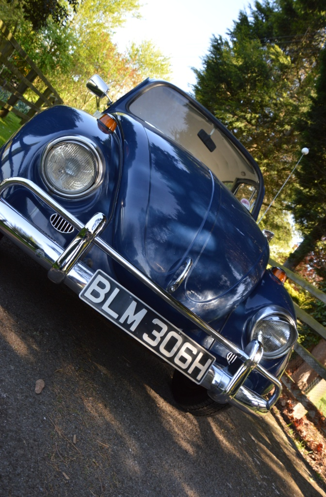 My beloved beetle